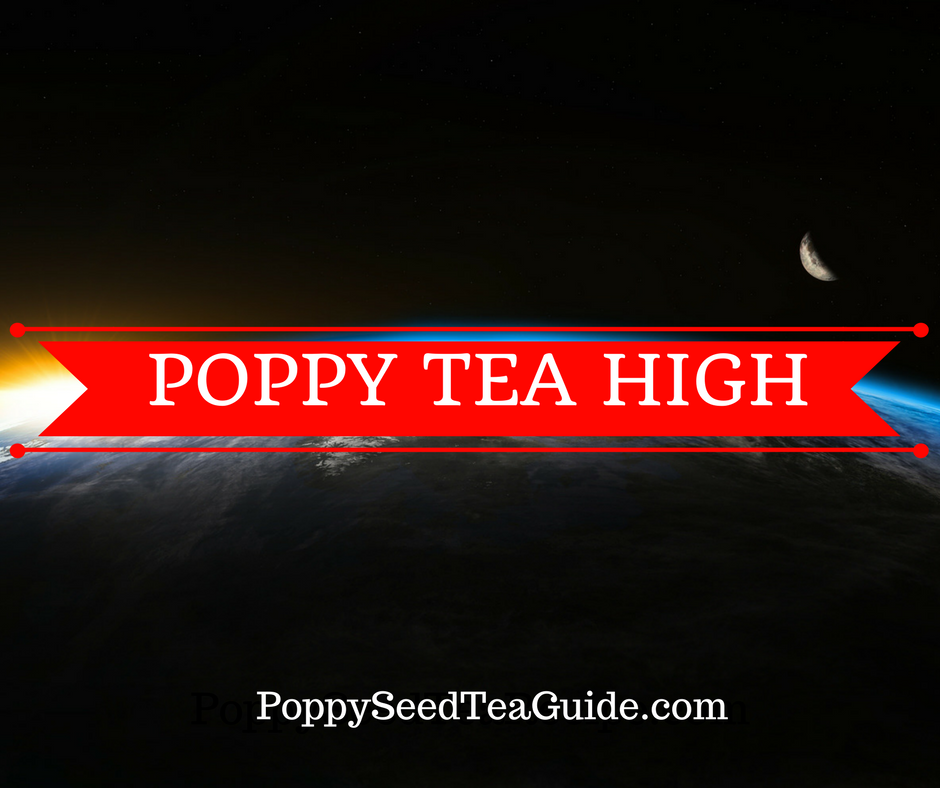 Poppy Tea High Discover How This Tea Can Launch Drinkers To Space