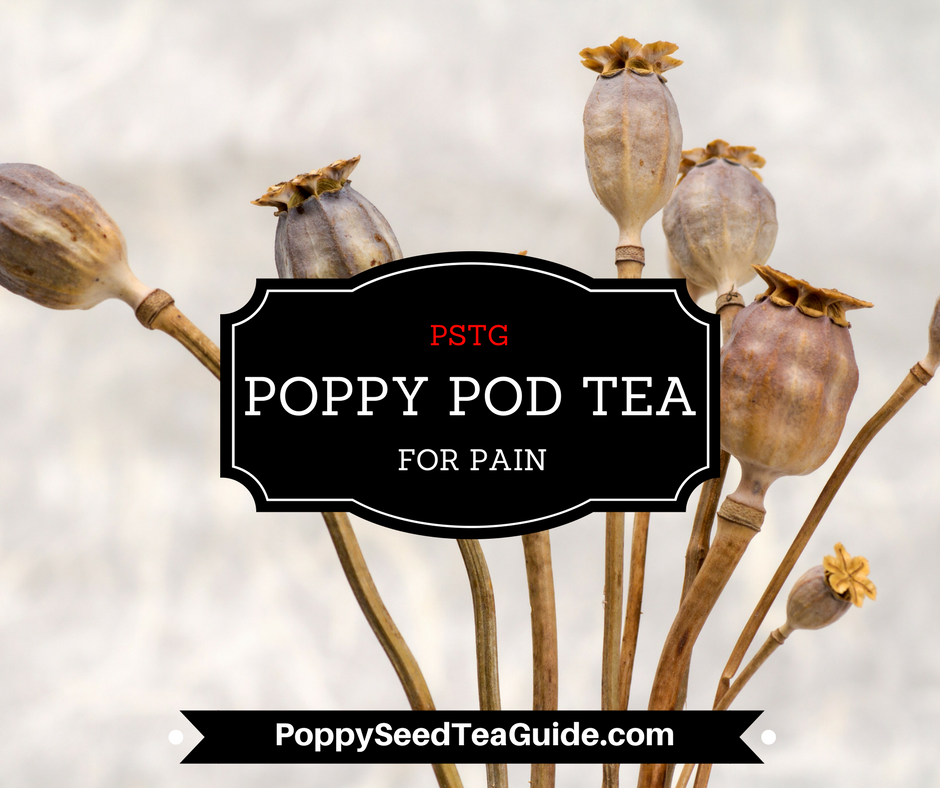 poppy pod tea for pain