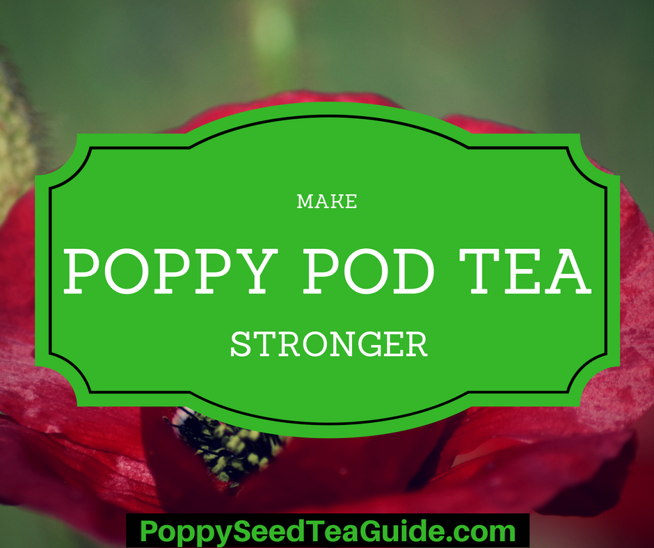 Top 5 Ways To Make Poppy Pod Tea Stronger Hint Most Under 5