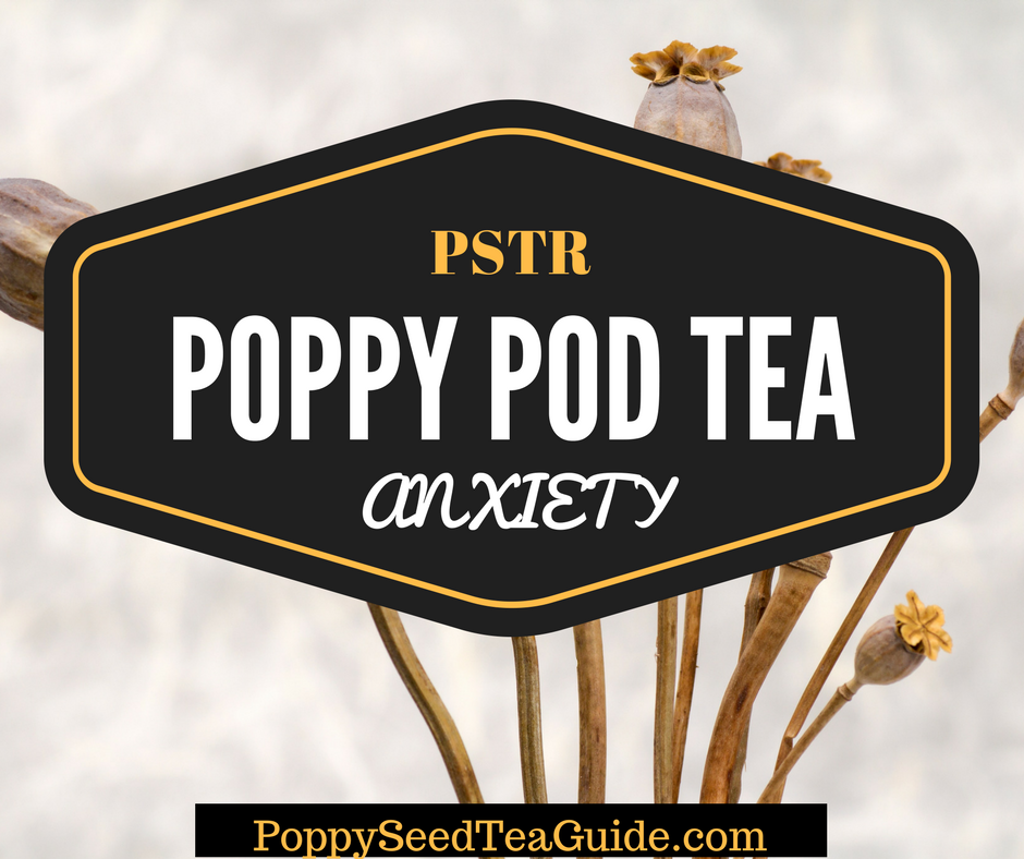 Poppy Pod Tea For Anxiety Learn More About This Powerful Tea