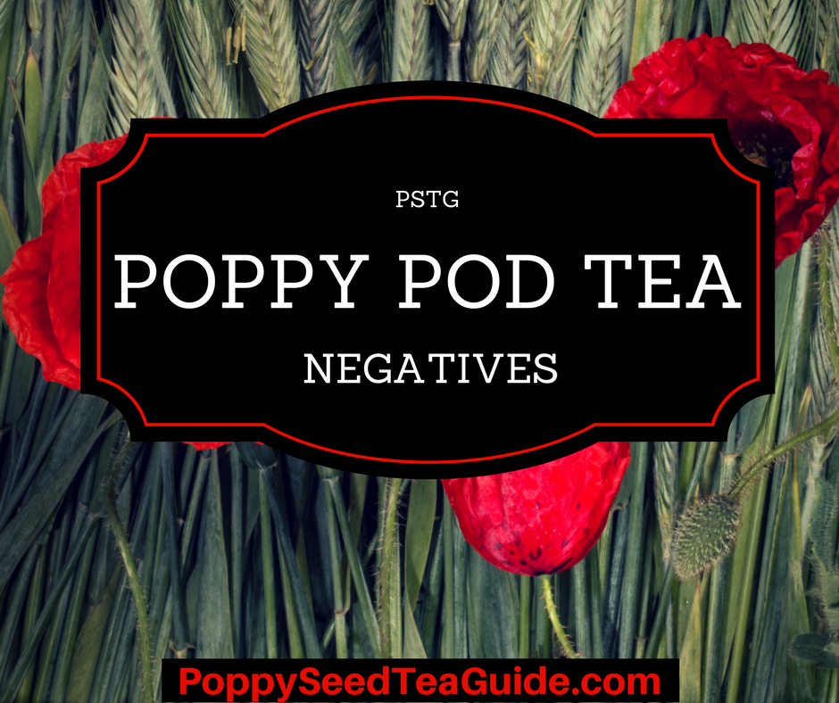 Poppy Pod Tea Negatives Discover The Drawbacks Of This Powerful Tea